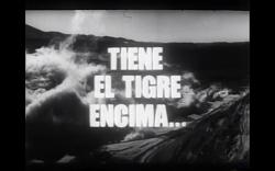 Amaral El tigre - Fig 2