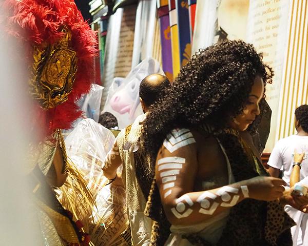 Fig. 2. Intérprete de la escuela de samba Estación Primera de Mangueira, preparándose para participar en el Carnaval de 2019
